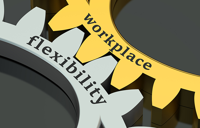 two gears one says flexibility and the other says workplace, represents organizational agility